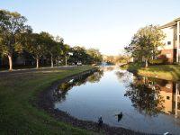 Home for sale: 10024 Strafford Oak Ct., Tampa, FL 33624