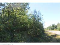 Home for sale: M1l109 Hatt Rd., Island Falls, ME 04747