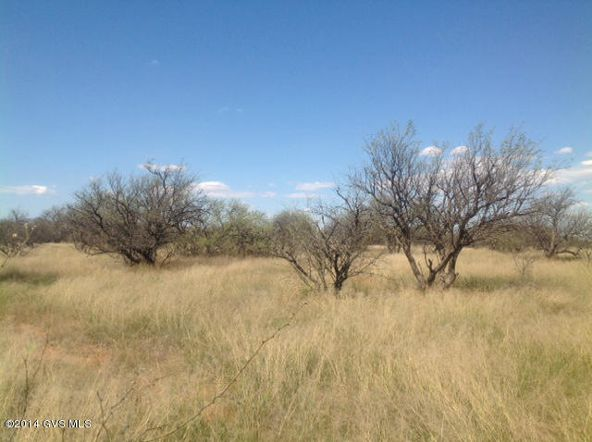 16005 W. Ranger Rd., Arivaca, AZ 85601 Photo 10
