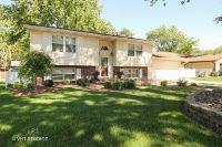 Home for sale: 330 North Monroe Avenue, Bradley, IL 60915