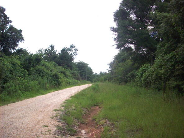 100 Rabbit Run, Atmore, AL 36502 Photo 1