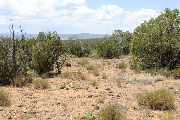 3 Stockman, Ash Fork, AZ 86320 Photo 3