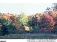 Home for sale: Lot 28 Lanesboro Ct., North Branch, MN 55056