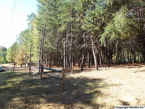10 S. County Rd. 89, Mentone, AL 35984 Photo 24