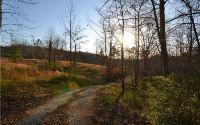 Home for sale: 00 Ray Rd., Jasper, GA 30143