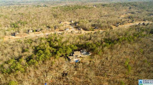 8202 Carrington Dr., Trussville, AL 35173 Photo 41