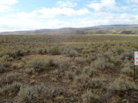 Home for sale: 000 Peterson Creek Rd., Leadore, ID 83464