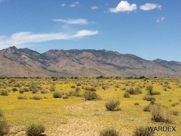 33233004 Land, Kingman, AZ 86409 Photo 8