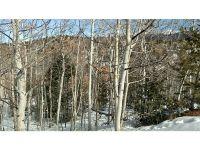 Home for sale: 105 Granite Ct., Cripple Creek, CO 80813