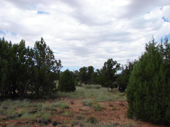 262 County Rd. 9215, Concho, AZ 85924 Photo 34