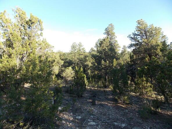 2945 Lodgepole, Overgaard, AZ 85933 Photo 3