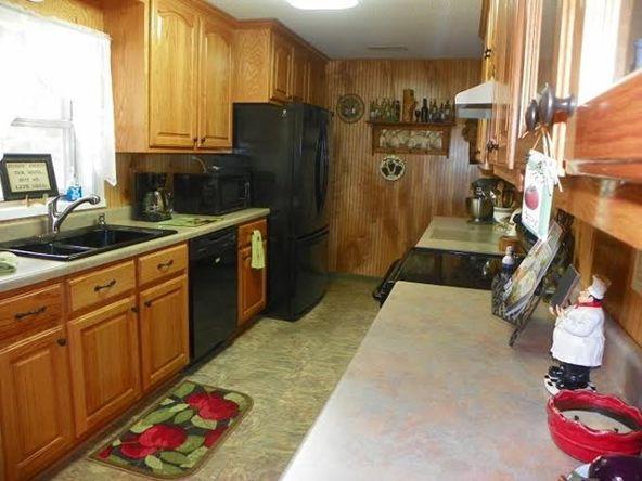 1110 Rose St., Rogersville, AL 35652 Photo 16
