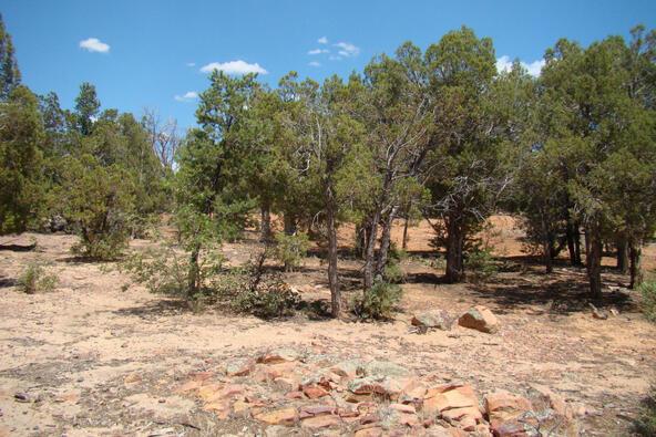 6658 Broken Arrow Way, Show Low, AZ 85901 Photo 3