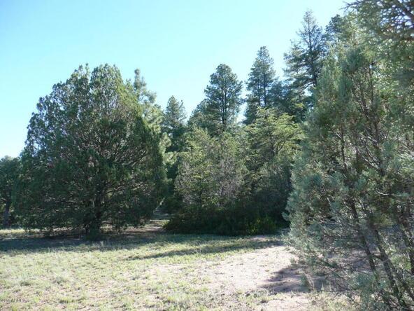 200 E. Cline Crossing, Young, AZ 85554 Photo 61