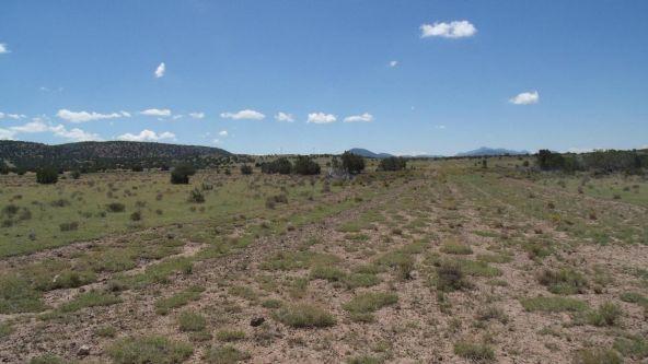 11116 S. State Route 64, Williams, AZ 86046 Photo 6