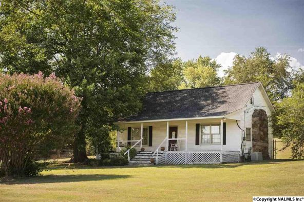 3373 County Rd. 214, Hillsboro, AL 35643 Photo 2