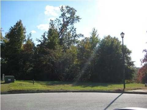 61 Fitzpatrick Point, Millbrook, AL 36054 Photo 2