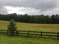 Home for sale: 3342 Tom Bartles Rd., Appling, GA 30802