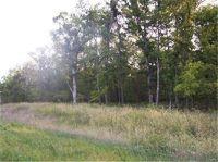 Home for sale: Outer, Farmington, MO 63640