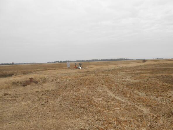 402.93 Acres Long Creek, Waldenburg, AR 72475 Photo 17