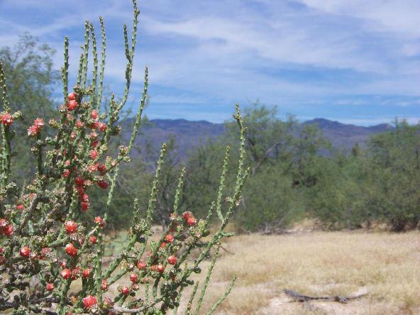 1326 N. Tanque Verde Loop, Tucson, AZ 85749 Photo 50