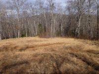 Home for sale: 7 Twin Ridge, Burnsville, NC 28714
