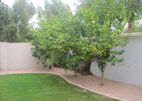 1847 E. Marquette Dr., Gilbert, AZ 85234 Photo 39