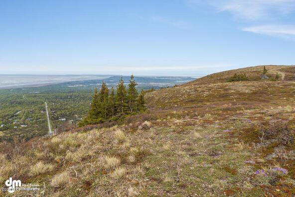 9820 Meadow Rd., Anchorage, AK 99516 Photo 9